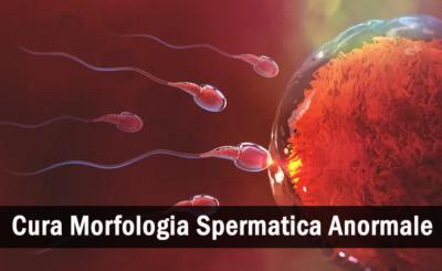 sapere sulla morfologia spermatica anormale
